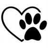 Logo-Kurseinschreibung